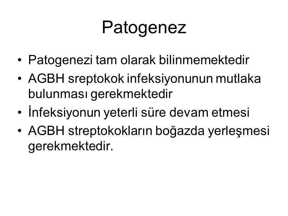Patogenez Patogenezi tam olarak bilinmemektedir AGBH sreptokok infeksiyonunun mutlaka bulunması gerekmektedir İnfeksiyonun yeterli süre devam etmesi A