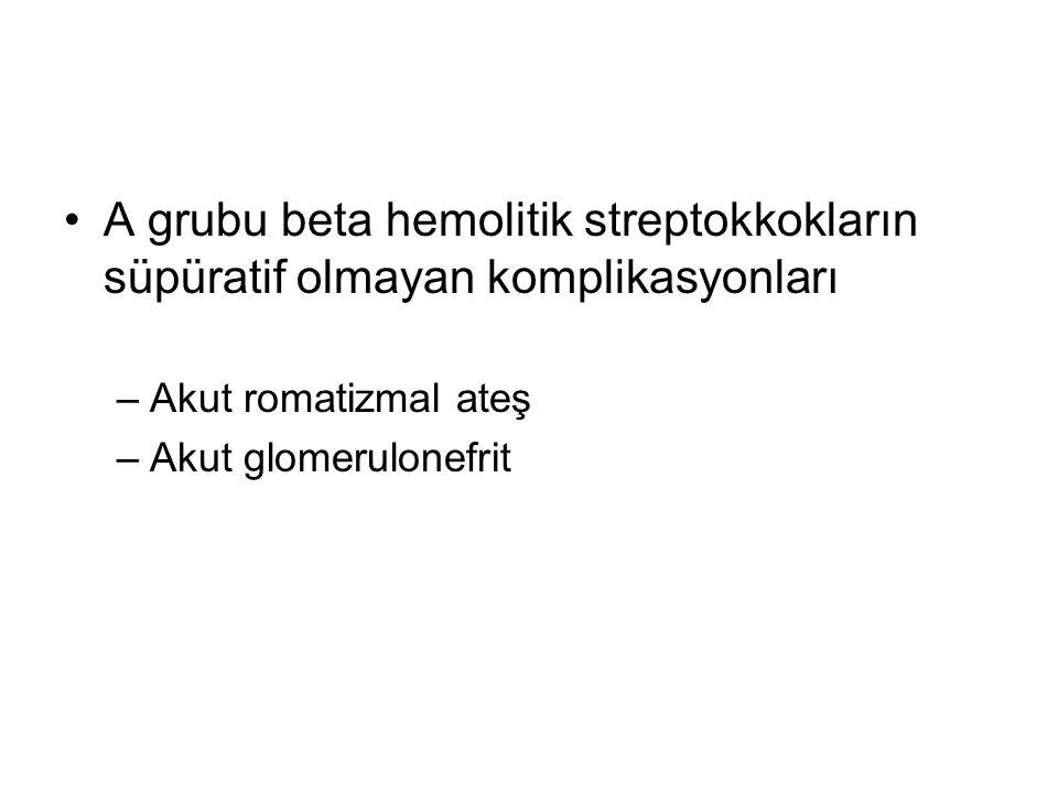 A grubu beta hemolitik streptokkokların süpüratif olmayan komplikasyonları –Akut romatizmal ateş –Akut glomerulonefrit