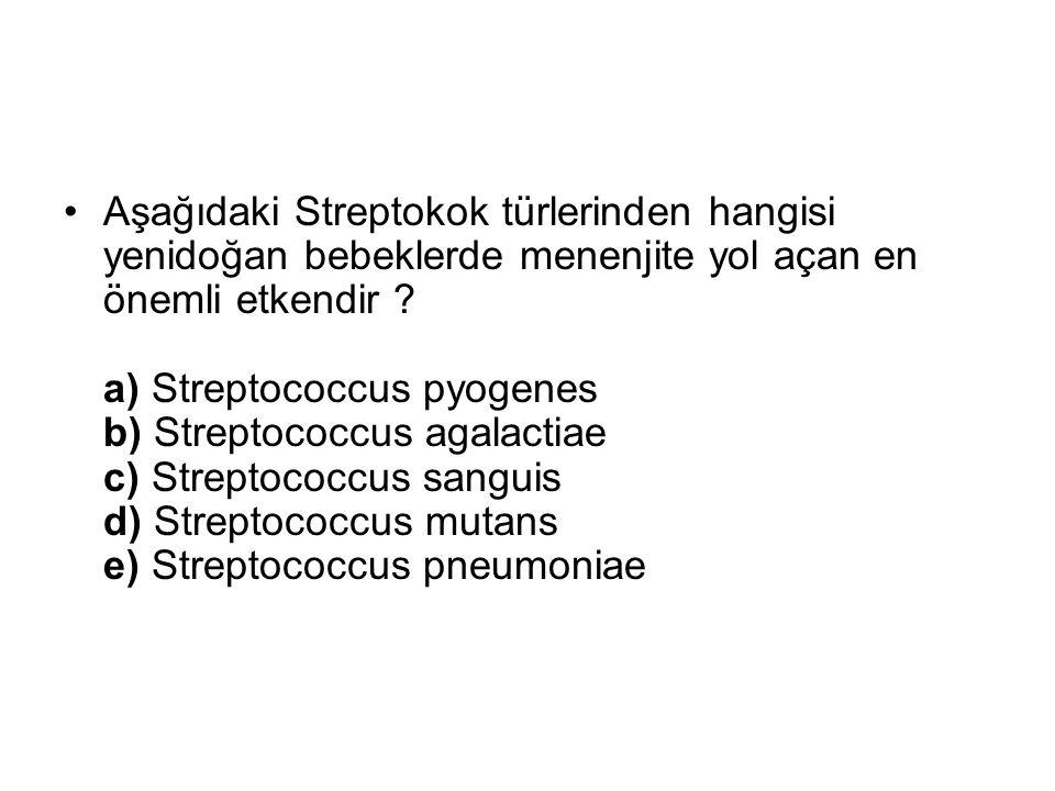 Aşağıdaki Streptokok türlerinden hangisi yenidoğan bebeklerde menenjite yol açan en önemli etkendir ? a) Streptococcus pyogenes b) Streptococcus agala