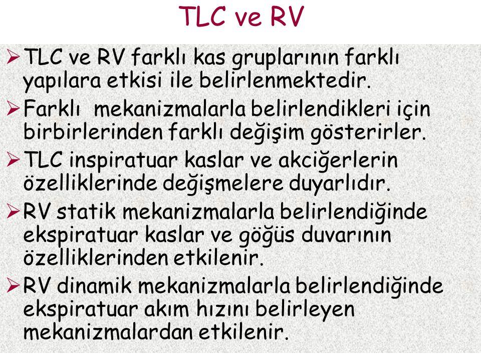 TLC ve RV  TLC ve RV farklı kas gruplarının farklı yapılara etkisi ile belirlenmektedir.  Farklı mekanizmalarla belirlendikleri için birbirlerinden