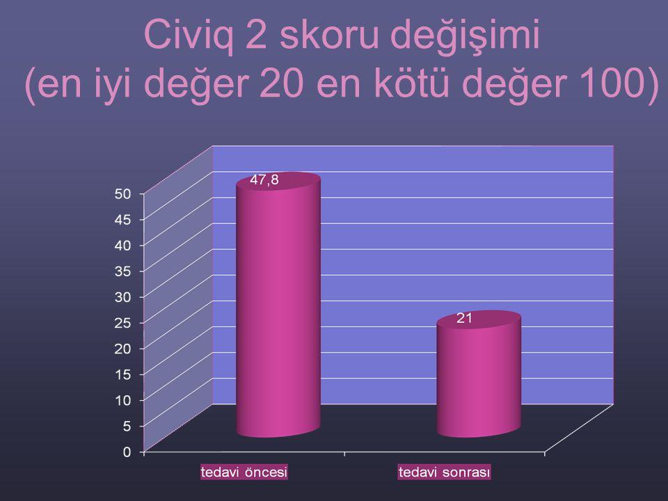 Civiq 2 skoru değişimi (en iyi değer 20 en kötü değer 100)