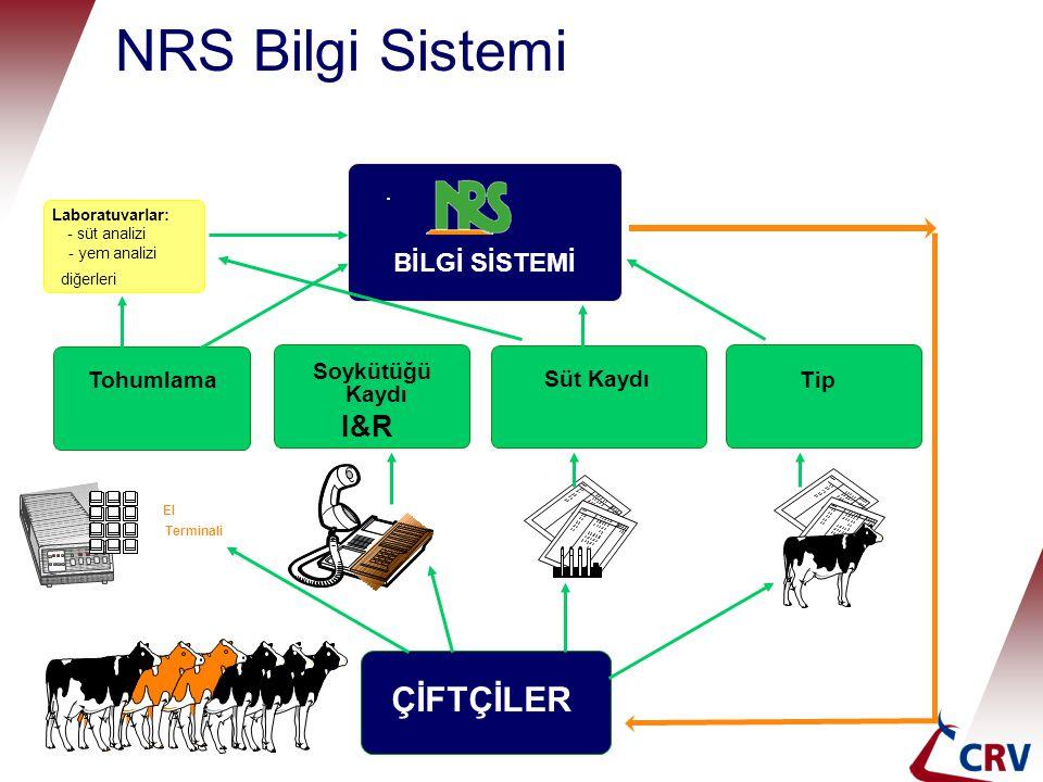 NRS Bilgi Sistemi diğerleri Tohumlama Soykütüğü Kaydı Süt Kaydı TipTip I&R ÇİFTÇİLER El Terminali Laboratuvarlar: - süt analizi - yem analizi BİLGİ SİSTEMİ