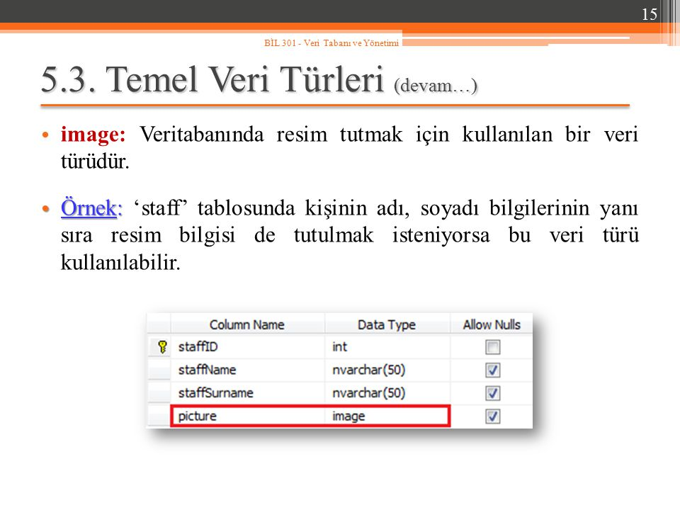 5.3. Temel Veri Türleri (devam…) image: Veritabanında resim tutmak için kullanılan bir veri türüdür. Örnek: Örnek: 'staff' tablosunda kişinin adı, soy