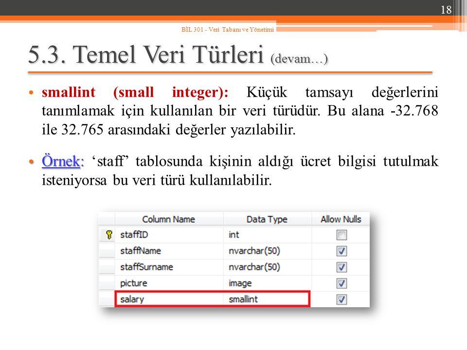 5.3. Temel Veri Türleri (devam…) smallint (small integer): Küçük tamsayı değerlerini tanımlamak için kullanılan bir veri türüdür. Bu alana -32.768 ile