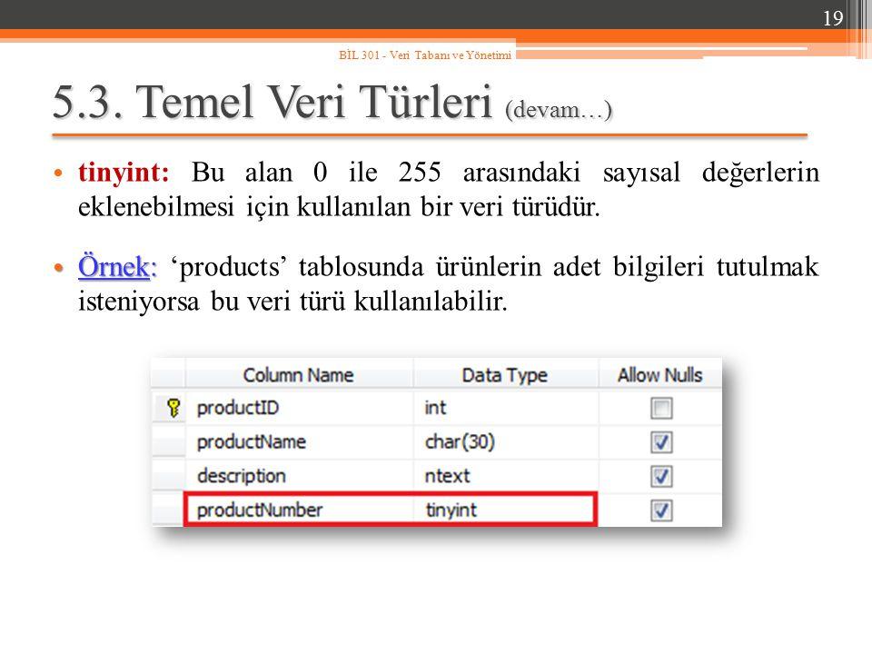 5.3. Temel Veri Türleri (devam…) tinyint: Bu alan 0 ile 255 arasındaki sayısal değerlerin eklenebilmesi için kullanılan bir veri türüdür. Örnek: Örnek