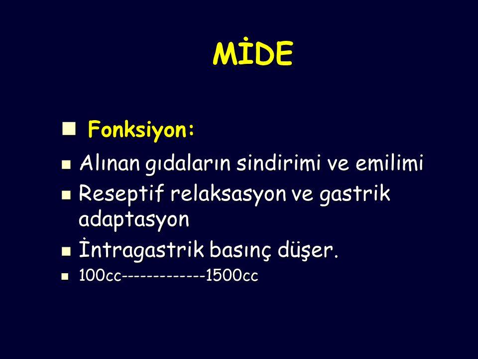 Advanced Gastric CA TYPE ( I )