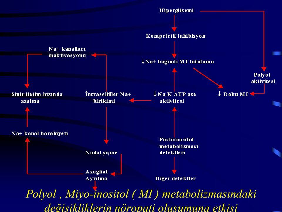 Polyol, Miyo-inositol ( MI ) metabolizmasındaki değişikliklerin nöropati oluşumuna etkisi