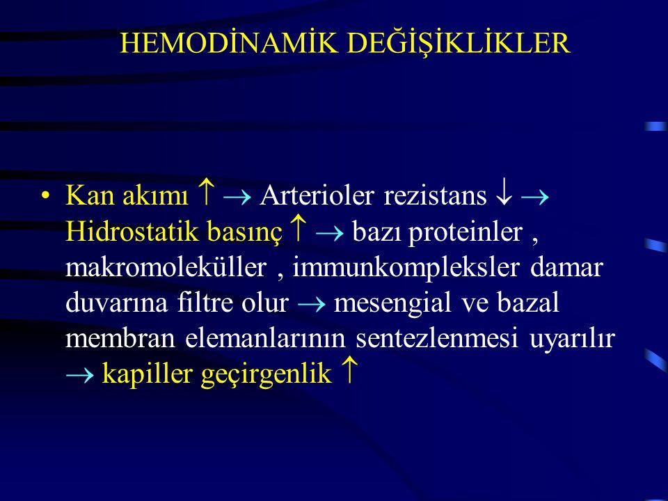 HEMODİNAMİK DEĞİŞİKLİKLER Kan akımı   Arterioler rezistans   Hidrostatik basınç   bazı proteinler, makromoleküller, immunkompleksler damar duvar