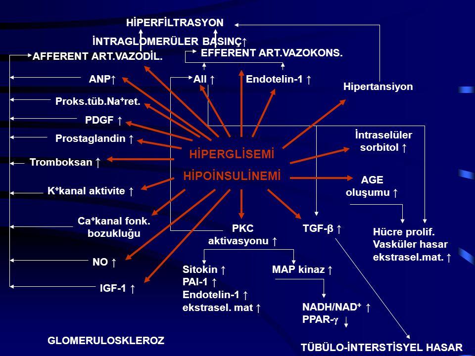 HİPERGLİSEMİ HİPOİNSULİNEMİ ANP ↑ PDGF ↑ IGF-1 ↑ Prostaglandin ↑ Tromboksan ↑ NO ↑ AII ↑ TGF-β ↑ AGE oluşumu ↑ PKC aktivasyonu ↑ İntraselüler sorbitol