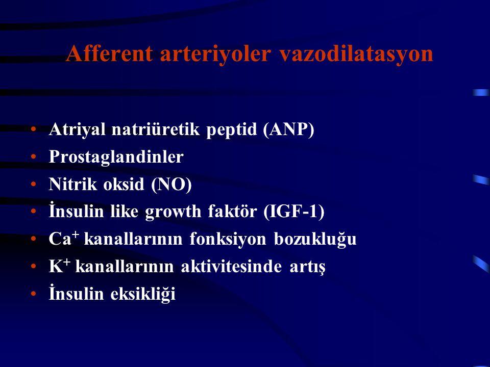 Afferent arteriyoler vazodilatasyon Atriyal natriüretik peptid (ANP) Prostaglandinler Nitrik oksid (NO) İnsulin like growth faktör (IGF-1) Ca + kanall