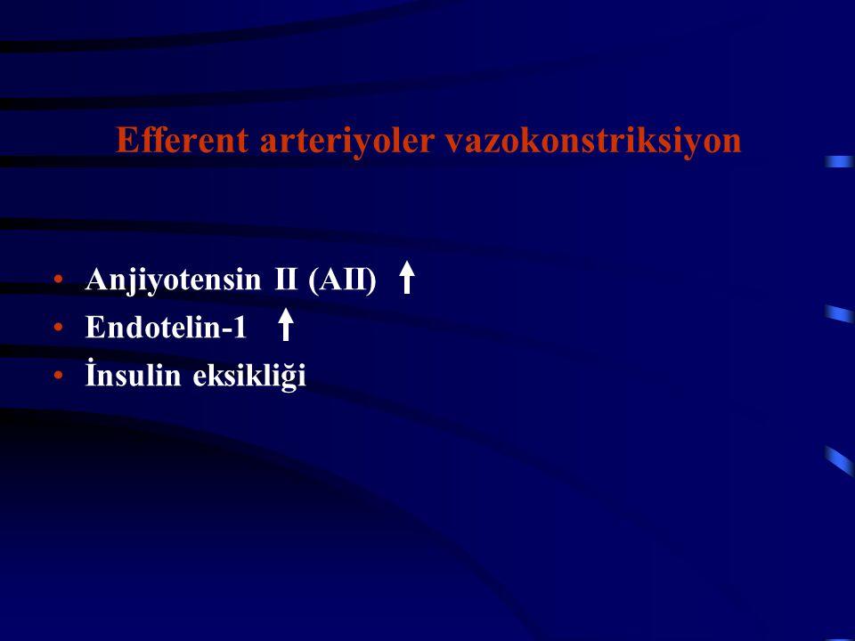 Efferent arteriyoler vazokonstriksiyon Anjiyotensin II (AII) Endotelin-1 İnsulin eksikliği