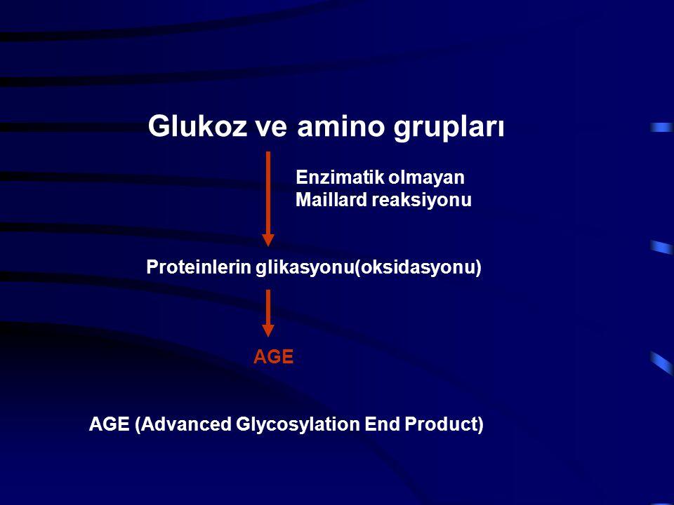 Glukoz ve amino grupları Enzimatik olmayan Maillard reaksiyonu Proteinlerin glikasyonu(oksidasyonu) AGE AGE (Advanced Glycosylation End Product)