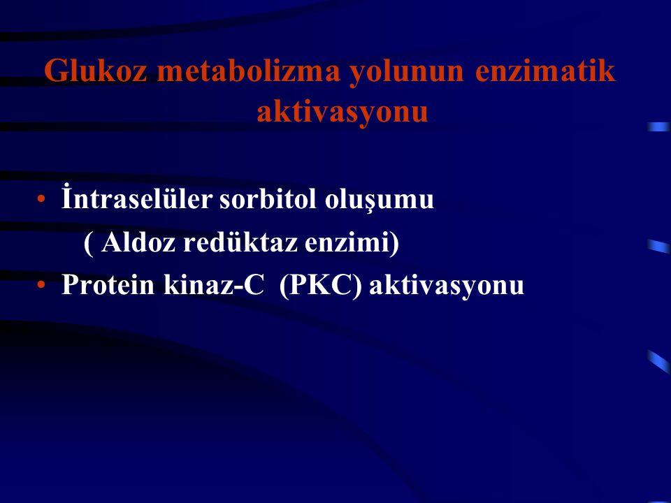 Glukoz metabolizma yolunun enzimatik aktivasyonu İntraselüler sorbitol oluşumu ( Aldoz redüktaz enzimi) Protein kinaz-C (PKC) aktivasyonu