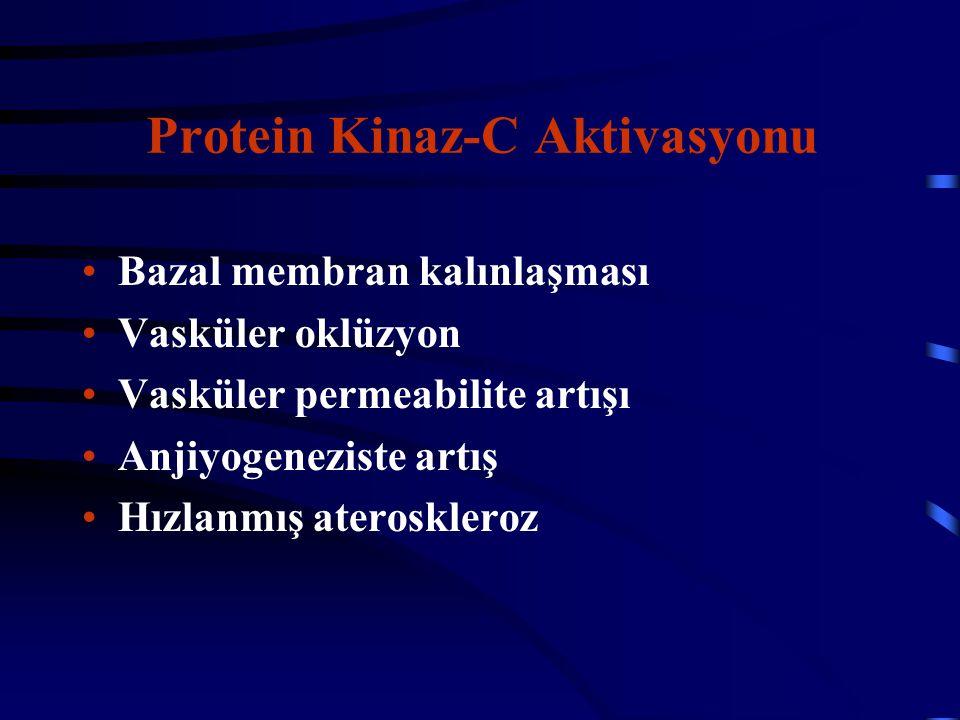 Protein Kinaz-C Aktivasyonu Bazal membran kalınlaşması Vasküler oklüzyon Vasküler permeabilite artışı Anjiyogeneziste artış Hızlanmış ateroskleroz