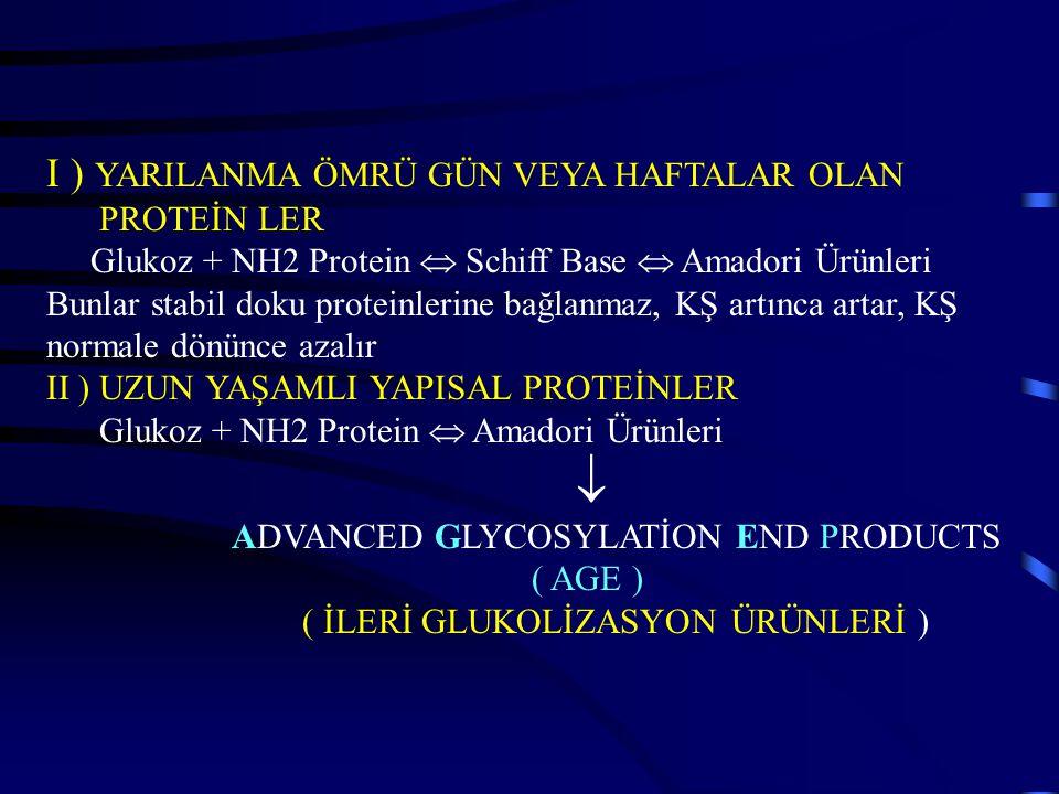 I ) YARILANMA ÖMRÜ GÜN VEYA HAFTALAR OLAN PROTEİNLER Glukoz + NH2 Protein  Schiff Base  Amadori Ürünleri Bunlar stabil doku proteinlerine bağlanmaz,