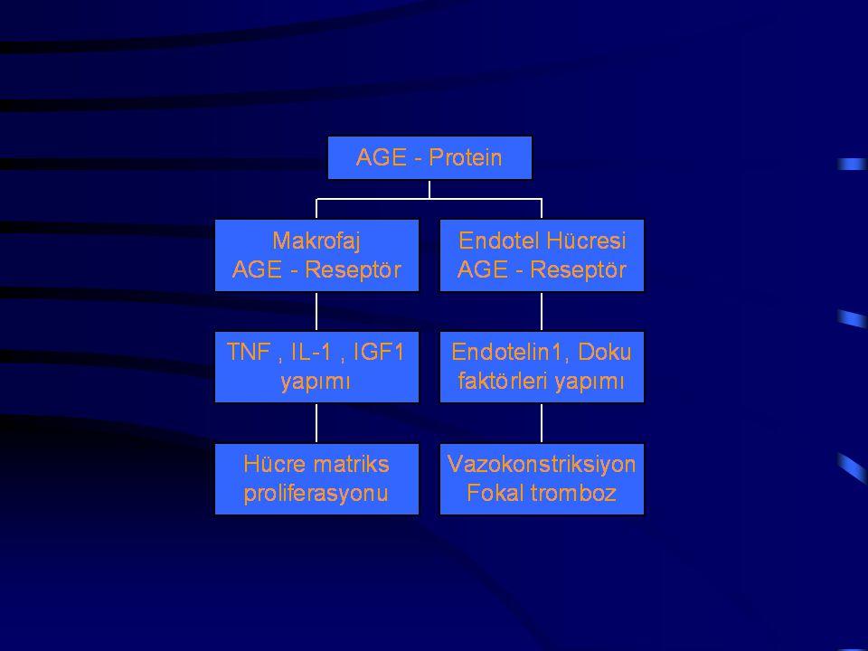 HİPERGLİSEMİ HİPOİNSULİNEMİ ANP ↑ PDGF ↑ IGF-1 ↑ Prostaglandin ↑ Tromboksan ↑ NO ↑ AII ↑ TGF-β ↑ AGE oluşumu ↑ PKC aktivasyonu ↑ İntraselüler sorbitol ↑ Ca + kanal fonk.