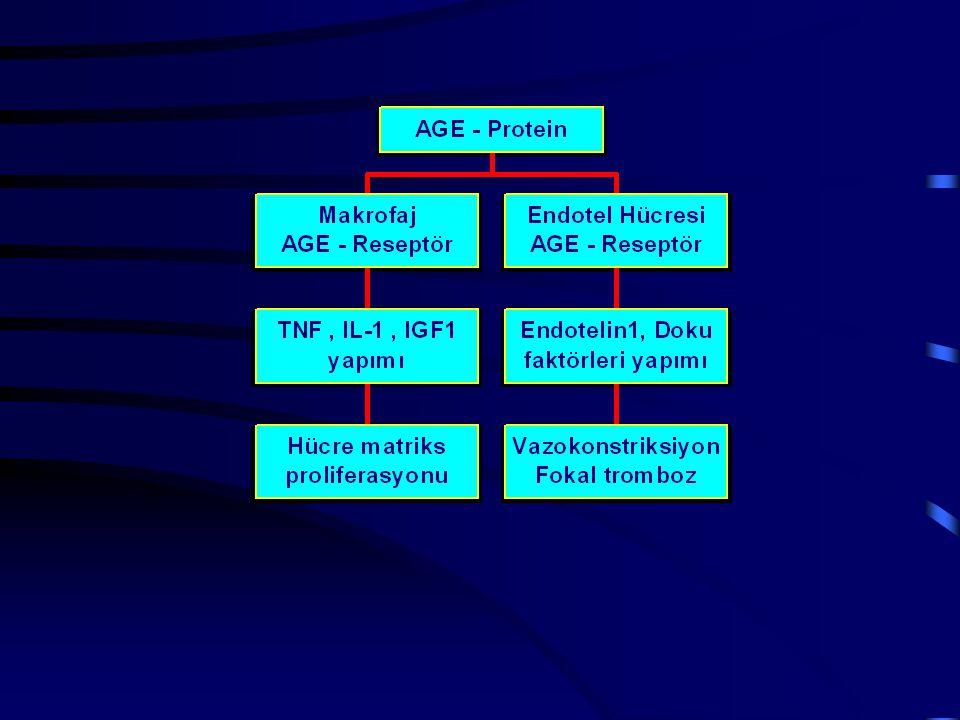 Diyabetik glomeruloskleroz Humoral dengesizlik - İntrarenal hormonlar ve sitokinlerin artışı (TGF-β,Anjiyotensin II, Endotelin-1, prostaglandin, tromboksan, nitrik oksid, IGF-1, PDGF Oksidatif stres
