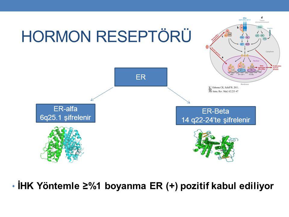 HORMON RESEPTÖRÜ POZİTİFLİĞİ ER pozitifliği -Postmenopozal olgularda : % 73 ER + % 27 ER – -Premenopozal olgularda : % 54 ER + % 46 ER -