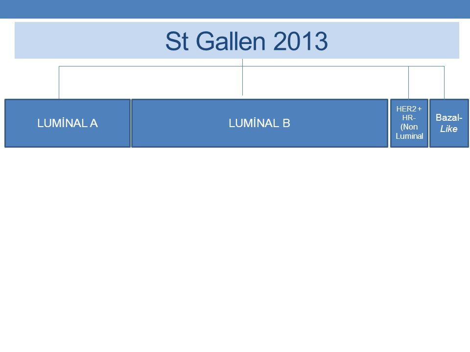 St Gallen 2013 LUMİNAL A HER2 + HR- (Non Luminal Bazal- Like LUMİNAL B