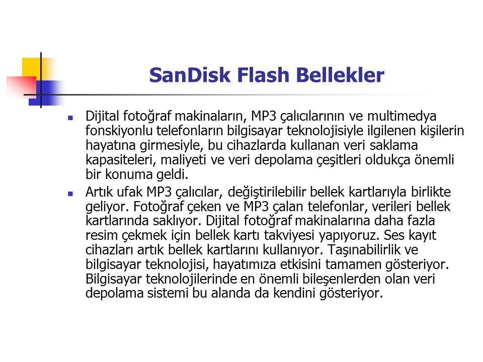 SanDisk Flash Bellekler Dijital fotoğraf makinaların, MP3 çalıcılarının ve multimedya fonskiyonlu telefonların bilgisayar teknolojisiyle ilgilenen kişilerin hayatına girmesiyle, bu cihazlarda kullanan veri saklama kapasiteleri, maliyeti ve veri depolama çeşitleri oldukça önemli bir konuma geldi.