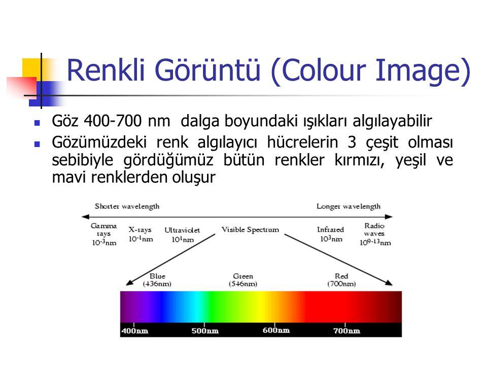 Göz 400-700 nm dalga boyundaki ışıkları algılayabilir Gözümüzdeki renk algılayıcı hücrelerin 3 çeşit olması sebibiyle gördüğümüz bütün renkler kırmızı, yeşil ve mavi renklerden oluşur Renkli Görüntü (Colour Image)
