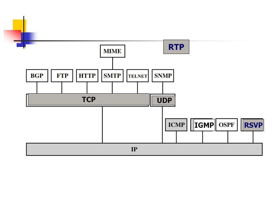 TCP IGMP UDP RTP RSVP