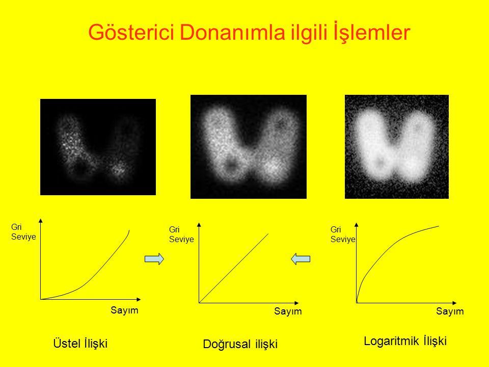 Gösterici Donanımla ilgili İşlemler Üstel İlişki Sayım Gri Seviye Gri Seviye Gri Seviye Doğrusal ilişki Logaritmik İlişki