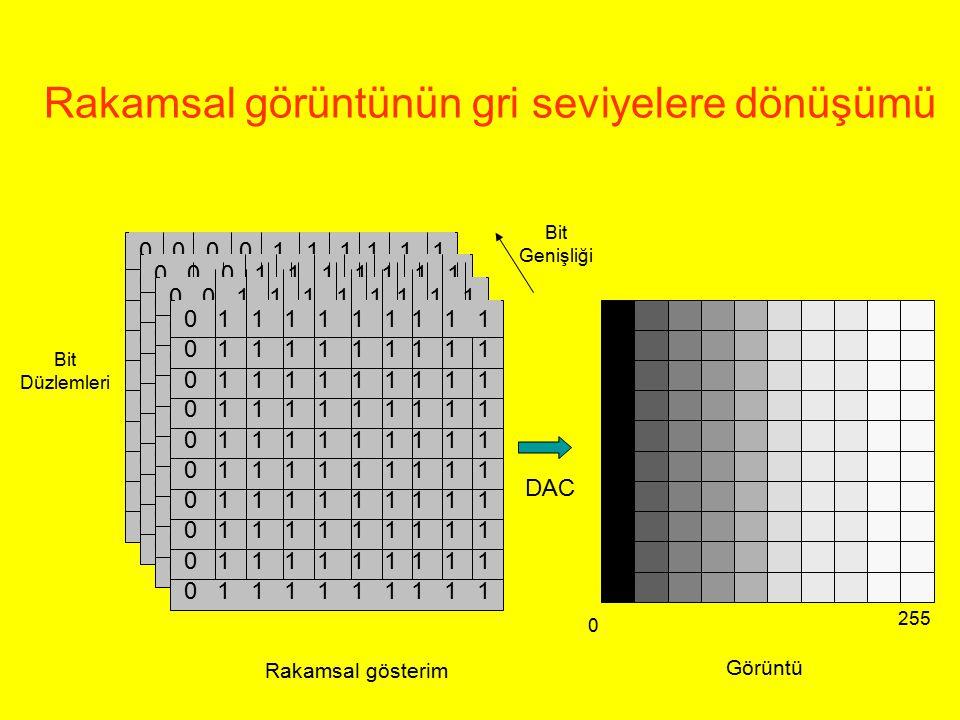 Rakamsal gösterim Bit Düzlemleri 0 255 Bit Genişliği DAC Rakamsal görüntünün gri seviyelere dönüşümü Görüntü