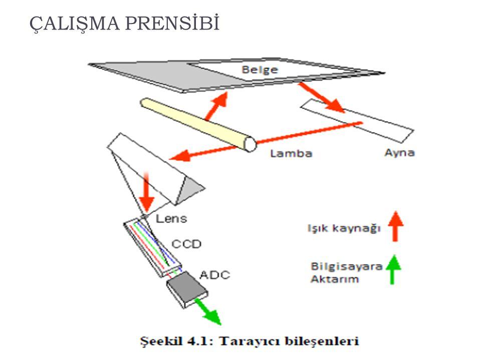 Tarayıcılarla İlgili Temel Kavramlar  Çözünürlük  Birimi dpi (dot per inch=inç başına nokta sayısı) ile belirlenir.