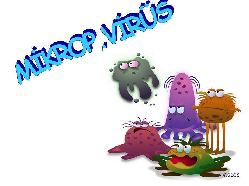 Yeryüzünde yaşayan en küçük canlılar olan mikroplar milyarlarca yıldır var….