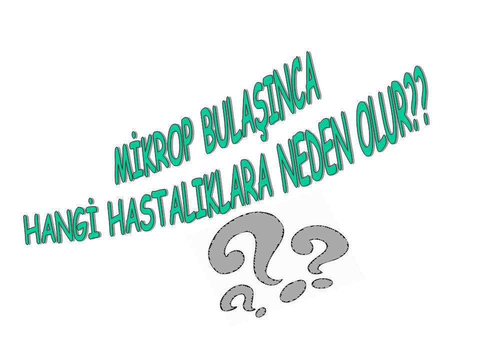 BİZE NASIL BULAŞIRLAR??.