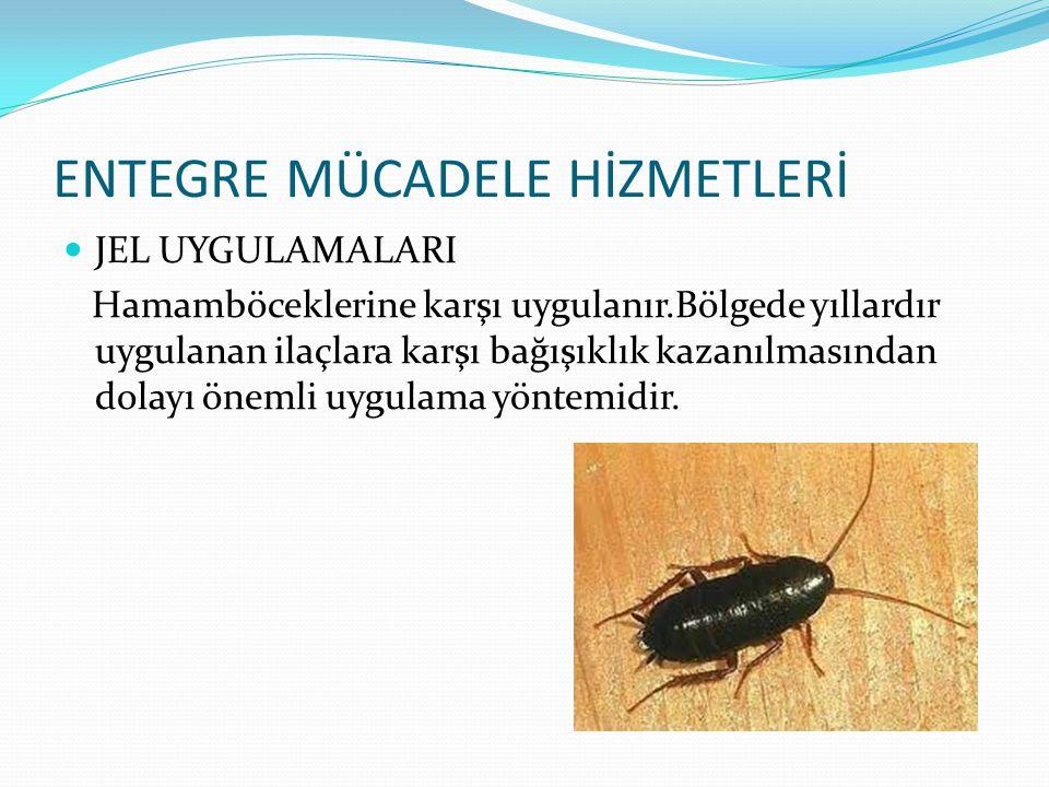 ENTEGRE MÜCADELE HİZMETLERİ JEL UYGULAMALARI Hamamböceklerine karşı uygulanır.Bölgede yıllardır uygulanan ilaçlara karşı bağışıklık kazanılmasından dolayı önemli uygulama yöntemidir.