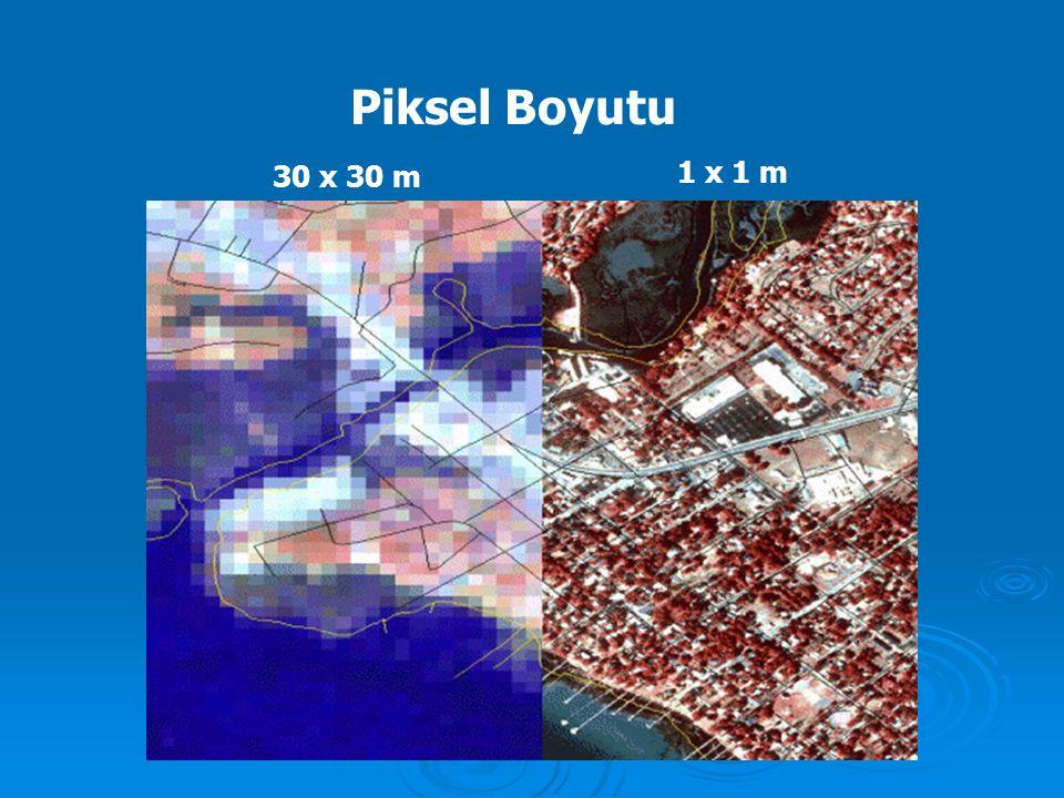 Piksel Boyutu 30 x 30 m 1 x 1 m