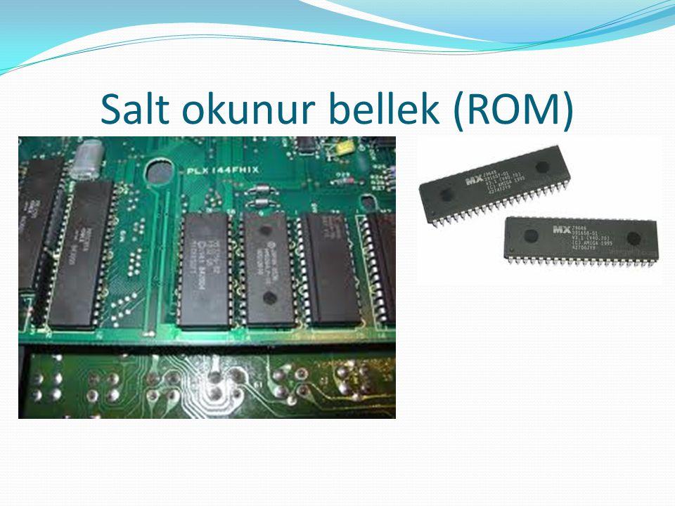 Salt okunur bellek (ROM)