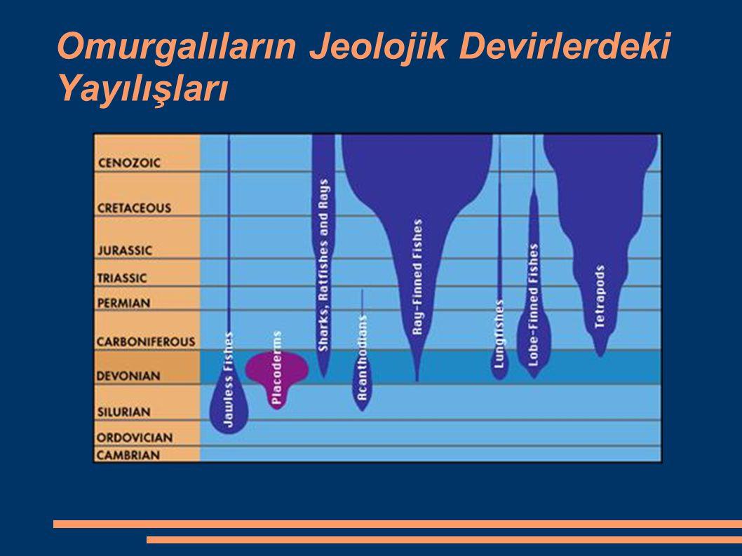 Omurgalıların Jeolojik Devirlerdeki Yayılışları