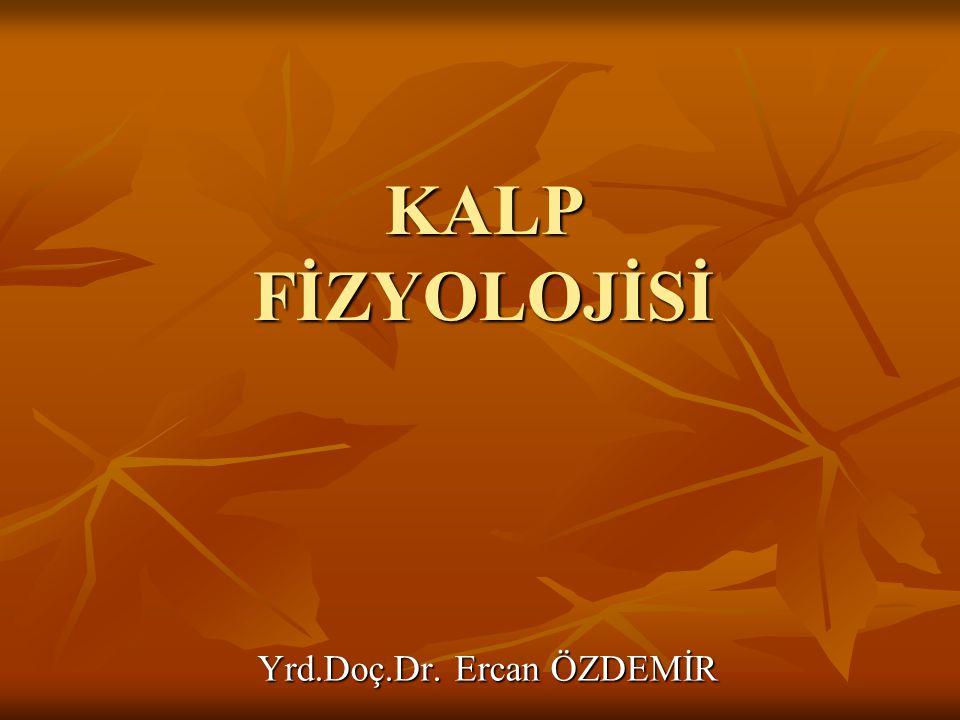 KALP FİZYOLOJİSİ Yrd.Doç.Dr. Ercan ÖZDEMİR