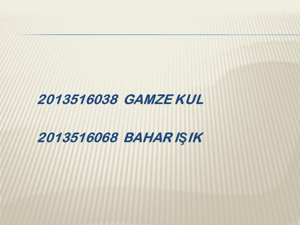 2013516038 GAMZE KUL 2013516068 BAHAR I Ş IK