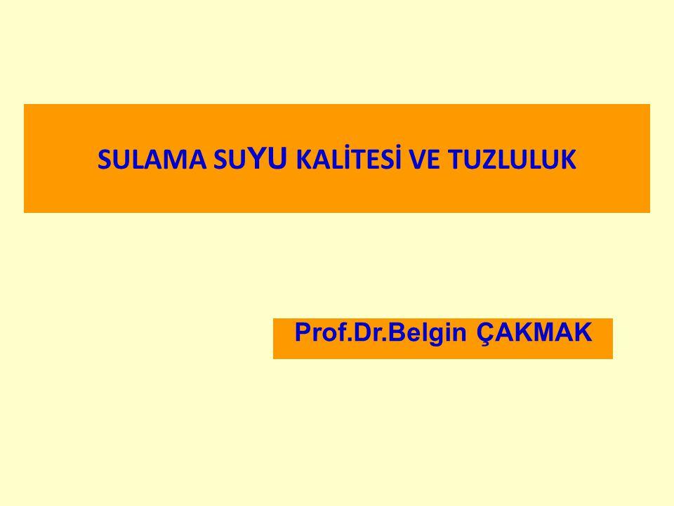 SULAMA SU YU KALİTESİ VE TUZLULUK Prof.Dr.Belgin ÇAKMAK