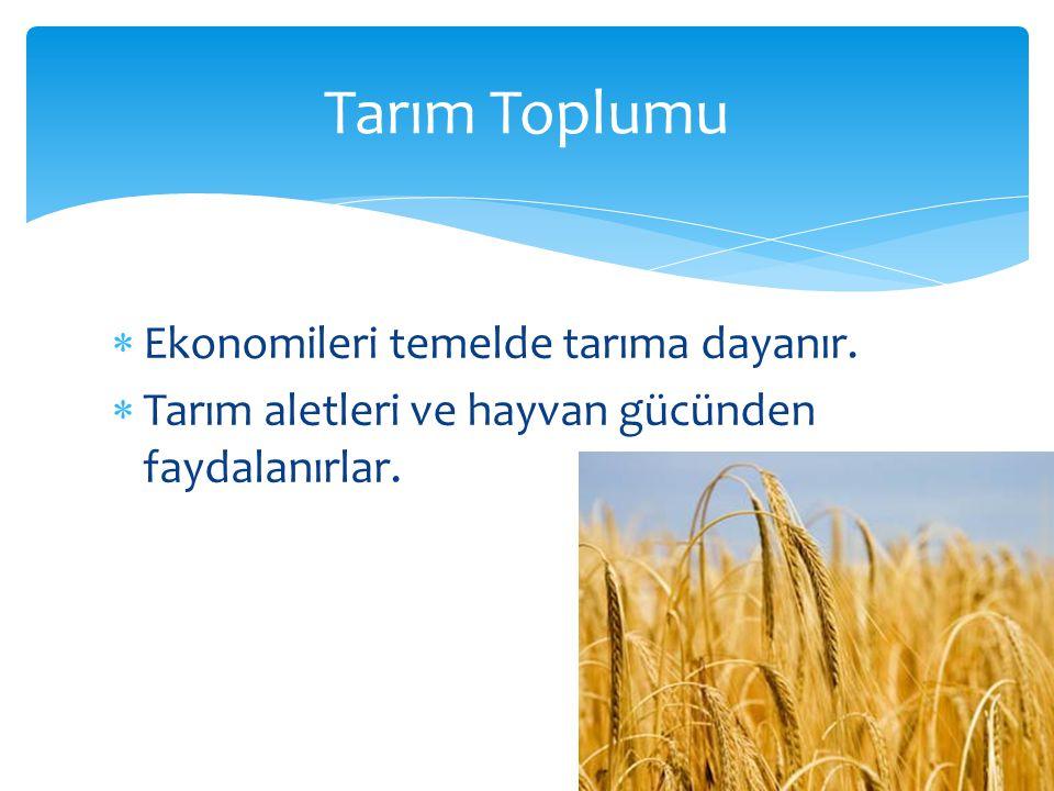 Tarım Toplumu  Ekonomileri temelde tarıma dayanır.  Tarım aletleri ve hayvan gücünden faydalanırlar.