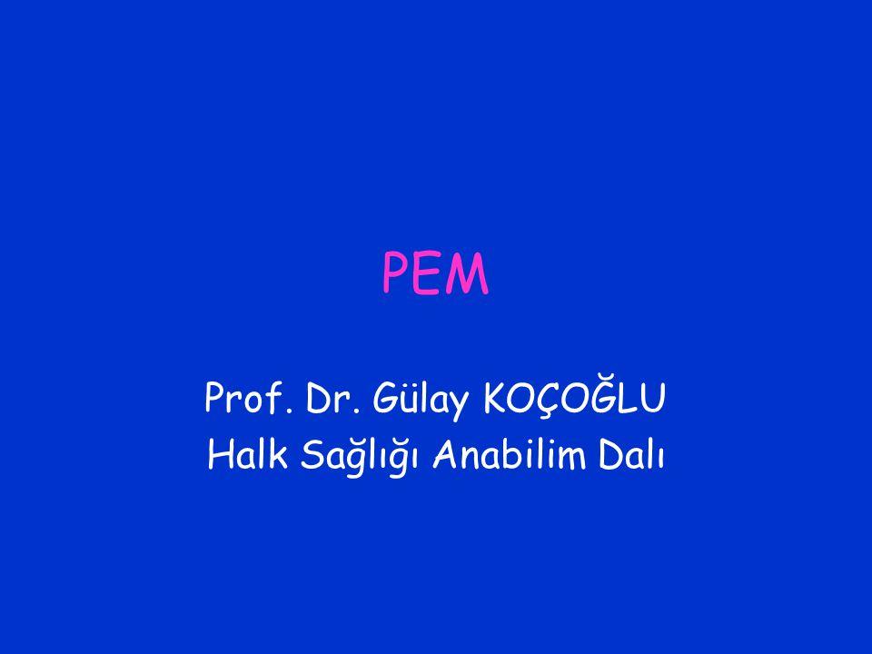 PEM Prof. Dr. Gülay KOÇOĞLU Halk Sağlığı Anabilim Dalı