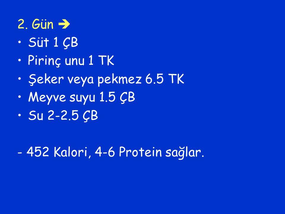 2. Gün  Süt 1 ÇB Pirinç unu 1 TK Şeker veya pekmez 6.5 TK Meyve suyu 1.5 ÇB Su 2-2.5 ÇB - 452 Kalori, 4-6 Protein sağlar.