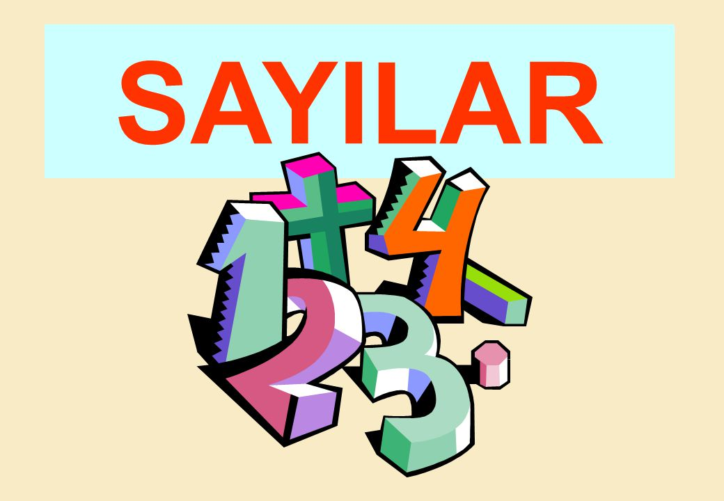 SAYILAR