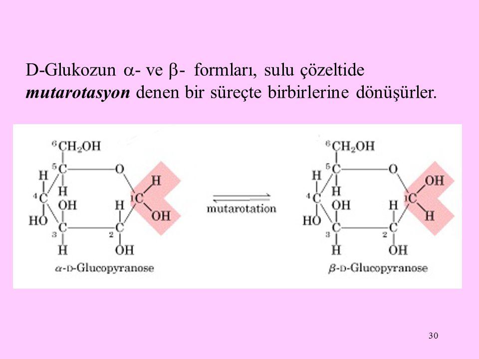 30 D-Glukozun  - ve  - formları, sulu çözeltide mutarotasyon denen bir süreçte birbirlerine dönüşürler.
