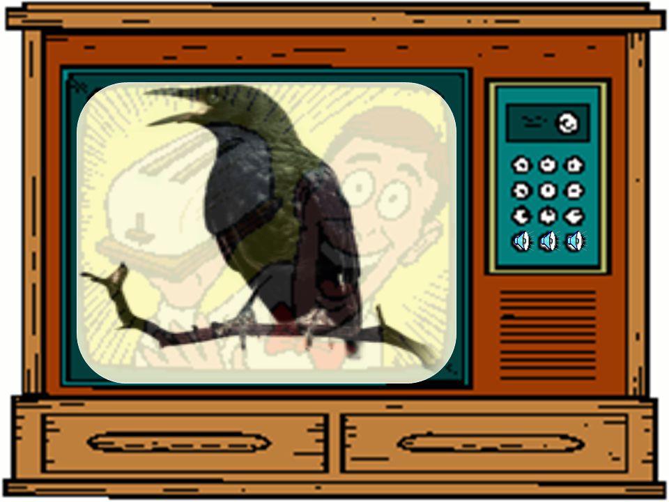 8 Biz baykuşlar nasıl öteriz ? Öterken en önce hangi sesi çıkarırız? Söyleyebilir misiniz? Haydi,sizde aynısını çıkarın bakalım.