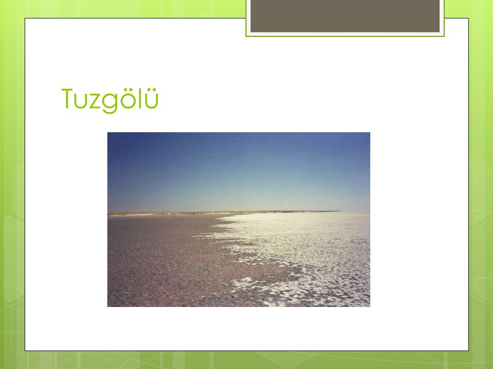 Tuzgölü