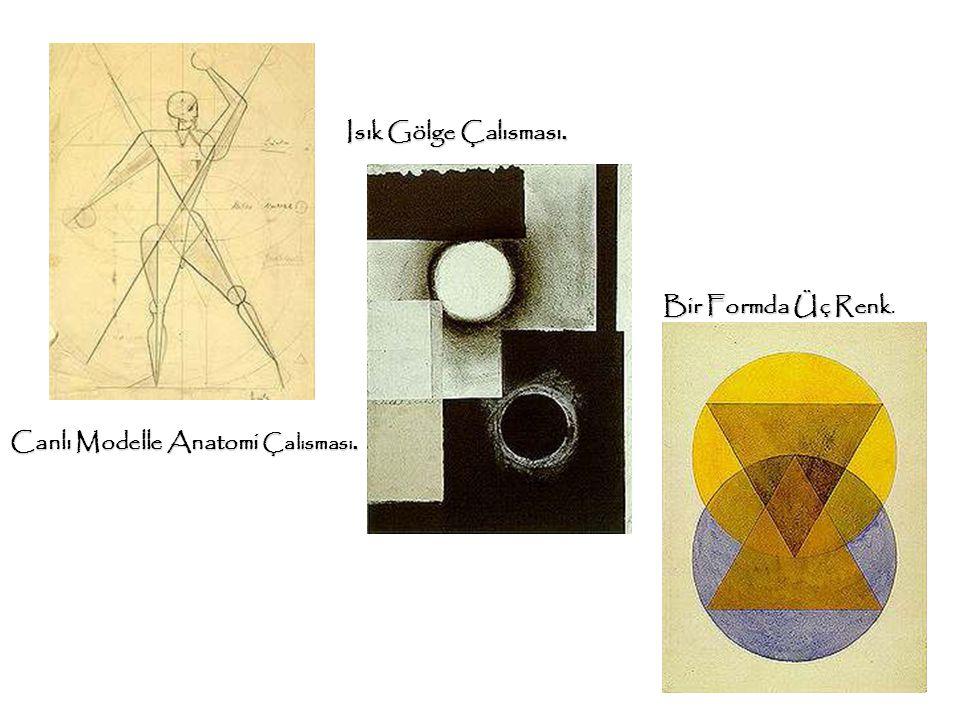 Canlı Modelle Anatomi Çalısması. Isık Gölge Çalısması. Bir Formda Üç Renk Bir Formda Üç Renk.