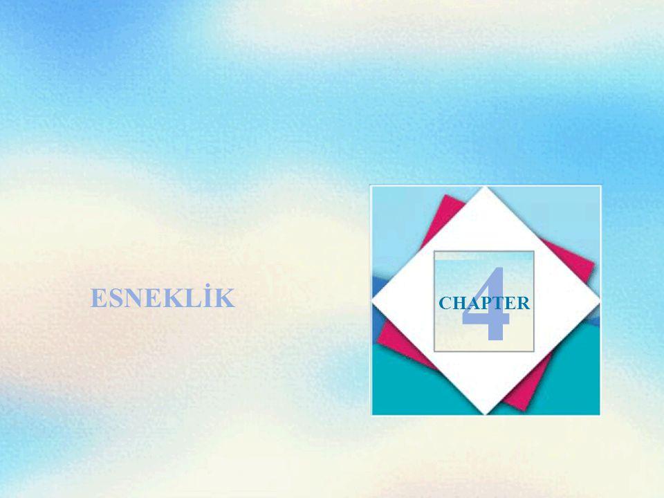 ESNEKLİK 4 CHAPTER
