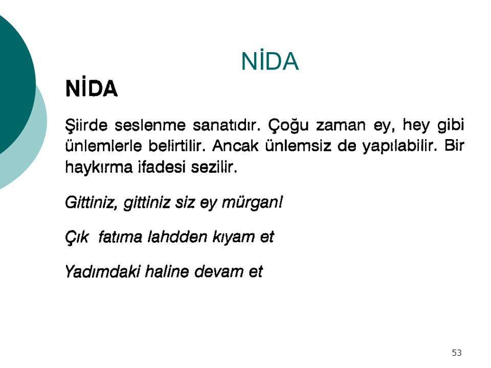 NİDA 53