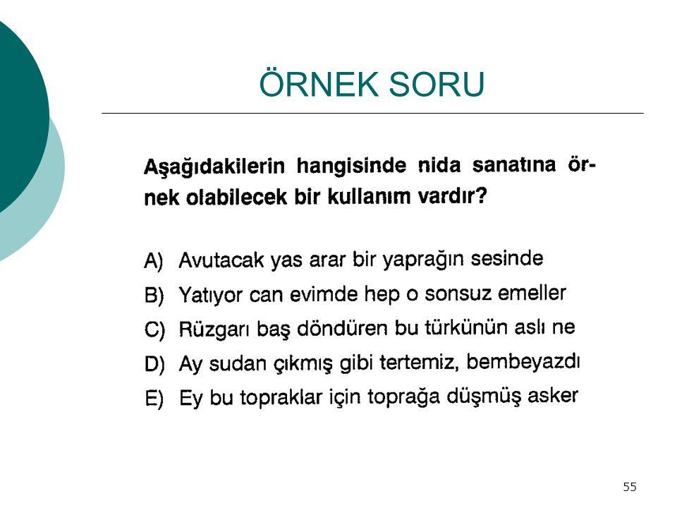 ÖRNEK SORU 55