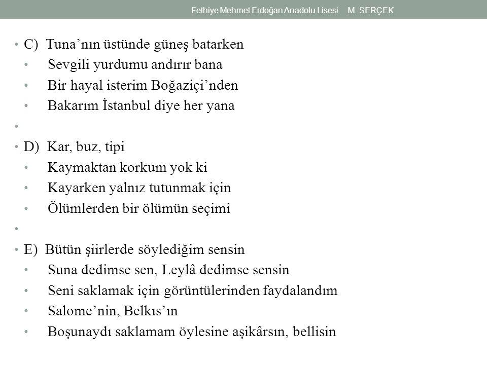 C) Tuna'nın üstünde güneş batarken Sevgili yurdumu andırır bana Bir hayal isterim Boğaziçi'nden Bakarım İstanbul diye her yana D) Kar, buz, tipi Kayma